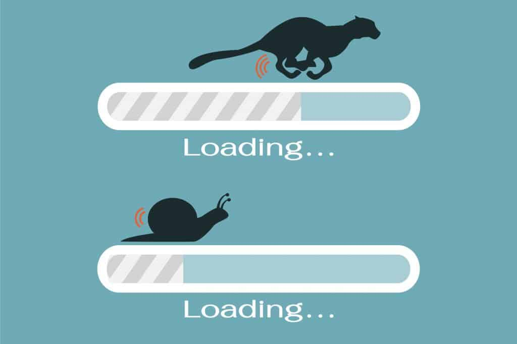 website speed the snail versus the tiger